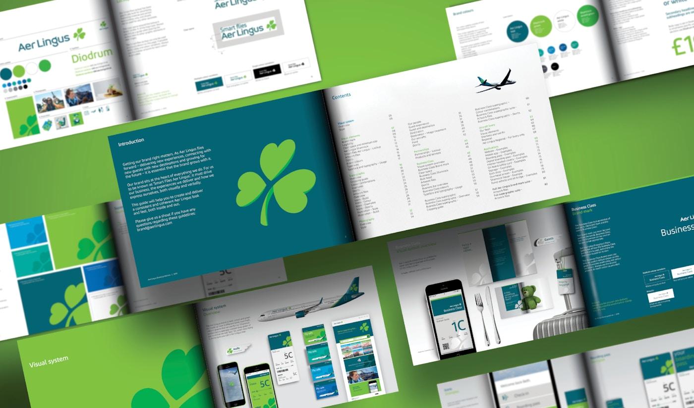 Aer Lingus visual system